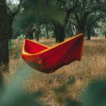 Rote Hängematte im Wald