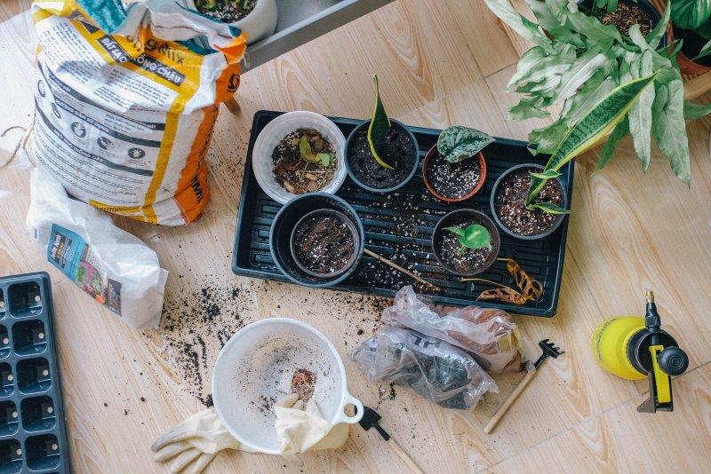 Arbeiten mit Pflanzen