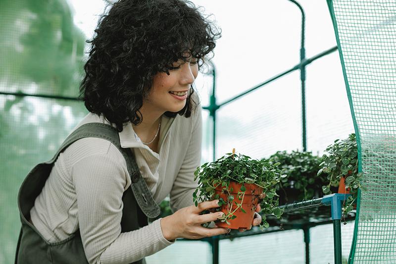Frau in Foliengewächshaus mit Pflanze