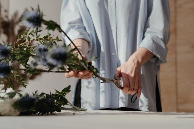 Die Gartenschere zeigen, wie Sie zum Beschneiden von Blumen verwendet wird