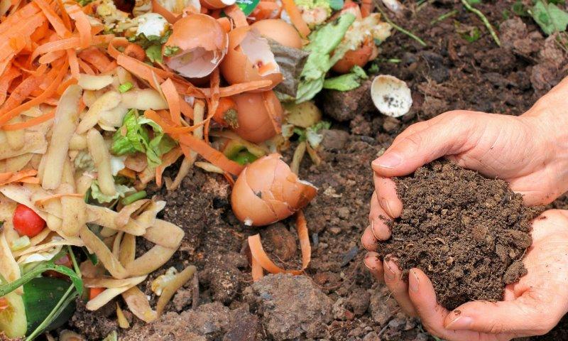 Kompost selber machen