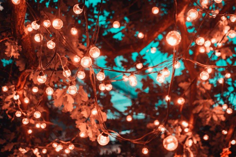 Beleuchteter Baum durch Lichterkette mit Glühbirnen