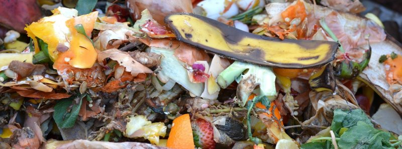 Küchenabfälle für Kompost benutzen