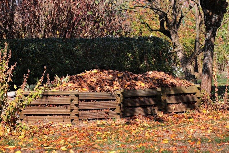 Flächenkompostierung von Herbstlaub