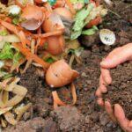 Komposterde aus Bioabfällen