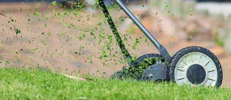 Rasen wird vertikutiert